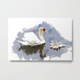 Swan and Cygnets on the Pond Metal Print