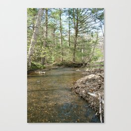 A lake in Westfield  Canvas Print