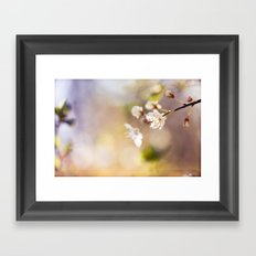 in the morning light Framed Art Print