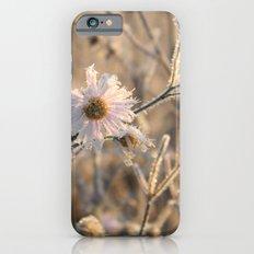 frozen delicacy Slim Case iPhone 6s