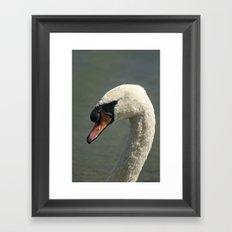 Posing makes Perfect Framed Art Print
