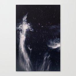 Falling stars II Canvas Print