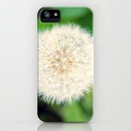Little Dandelion iPhone Case