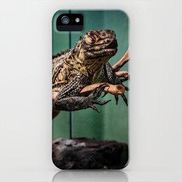 Languid Lizard iPhone Case