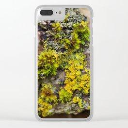 Moss on a Fallen Tree Clear iPhone Case