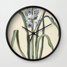 Hyacinth, Laurens Jacobsz. van der Vinne, 1737 Wall Clock