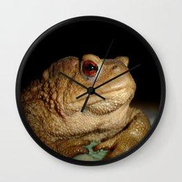 Common European Toad, Bufo Bufo Wall Clock