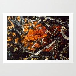 Pyroxene Crystals Art Print