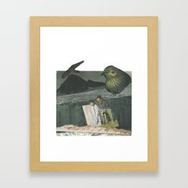 The Birds are Not What They Seem Framed Art Print