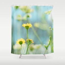 Afternoon in the meadow Shower Curtain