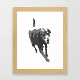 Bodie Girl (the Lab) Framed Art Print