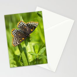 Pretty Butterfly Stationery Cards