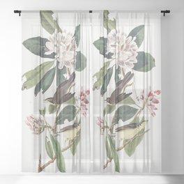 Canada warbler, Birds of America, Audubon Plate 103 Sheer Curtain