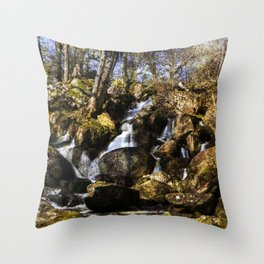 Becky Falls with texture Throw Pillow