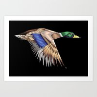 duck Art Prints featuring Duck by AkuMimpi