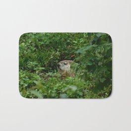 Groggy Groundhog Bath Mat