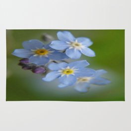 Close-up Forget Me Not - Blue Myosotis Rug