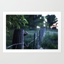 Domingo en el campo - Sunday at the countryside Art Print