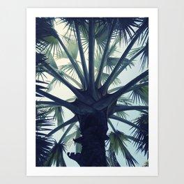 Tropical Tranquillity Art Print