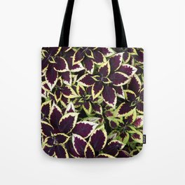 Coleus Plant Leavs Tote Bag