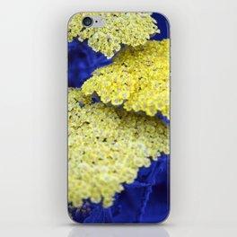 Longwood Gardens - Spring Series 129 iPhone Skin