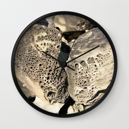 Stone Lace Wings Rock Boulder Washington Northwest Geology Geologist Sandstone Chuckanut Formation Wall Clock