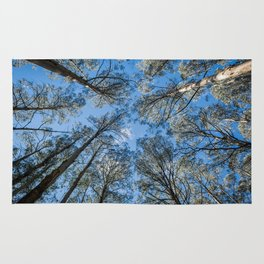 Reach for the Sky Rug