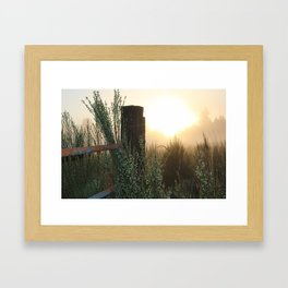 Foggy Sunrise Framed Art Print