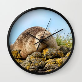 Seal at Dunvegan Castle, Scotland Wall Clock