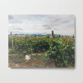 The Chicken and the Farm Metal Print