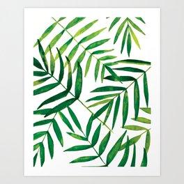 tropical loose palm leaves  Art Print