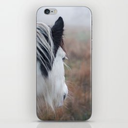 Profile of a Black and White Horse iPhone Skin