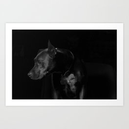 The black dog 7 Art Print