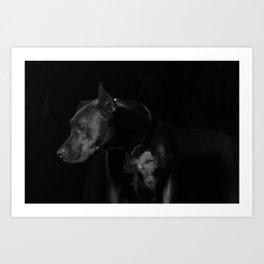 The black dog 7 Art Print