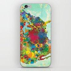 United States Map iPhone & iPod Skin