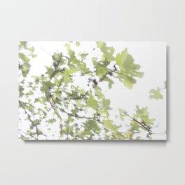 Minimalist Fig Leaf Abstract Photograph Metal Print