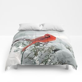 Cardinal on Snowy Branch (sq) Comforters