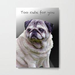 Too cute for you Pug Metal Print
