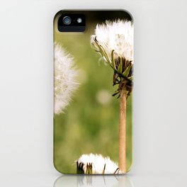 Lion's Den iPhone Case