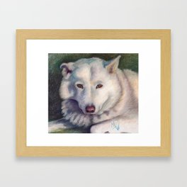 Beautiful Bear Framed Art Print