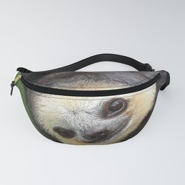Three-toed sloth at Green Heritage Fund Suriname Fanny Pack