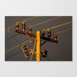 Circuit Breaker Canvas Print