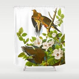 Carolina Pigeon Vintage Illustration Shower Curtain