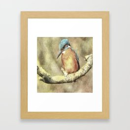 Stunning Kingfisher In Watercolor Framed Art Print