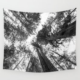 Muir Woods - California Wall Tapestry