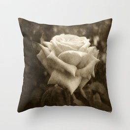 Pink Roses in Anzures 6 Antiqued Throw Pillow