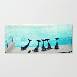 Spectacular Dolphin Show Canvas Print