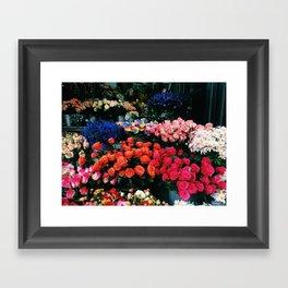 Flowers in the Grounds Framed Art Print