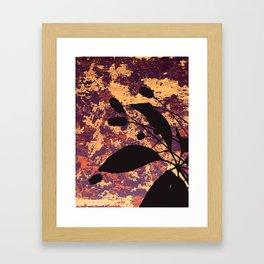 Coots Series 4 of 4 Framed Art Print