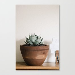 indoor agave Canvas Print